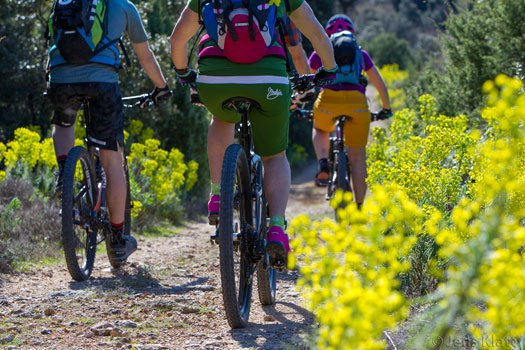 guided MTB day trips Kvarner Bay - Cycle Croatia